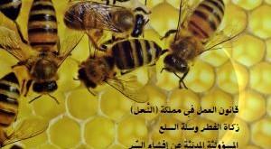 مجلة الاقتصاد الاسلامي العدد 37